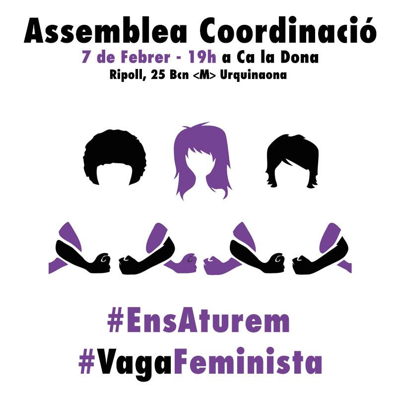 Assemblea coordinació vaga feminista